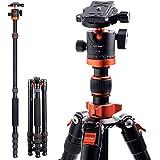 K&F Concept TM2515M1 Kamera Stativ 171cm, Kompaktes Aluminum Stativ mit 360°Kugelkopf und...